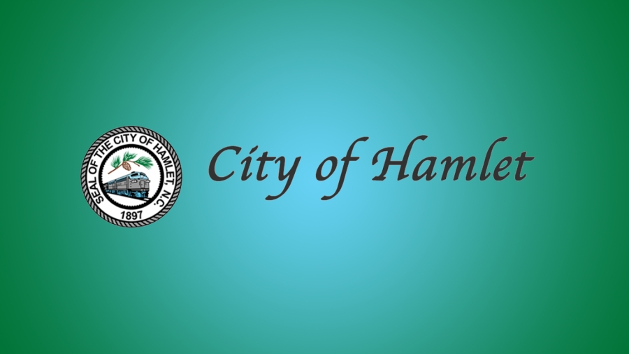 3 vie for empty Hamlet City Council seat