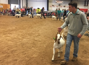 Coleman Berry with the Senior Class at the 2017 N.C. State Fair Meat Goat Show.