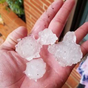 Hamlet residents report quarter- to golf ball-sized hail fell during a storm that passed through Sunday afternoon. A severe thunderstorm warning and regional tornado watch recently expired.