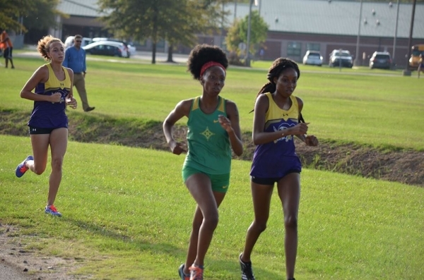 ROSports File Photo: Senior Airel Brown set the pace with a second overall finish in Tuesday's cross country meet in Lumberton.