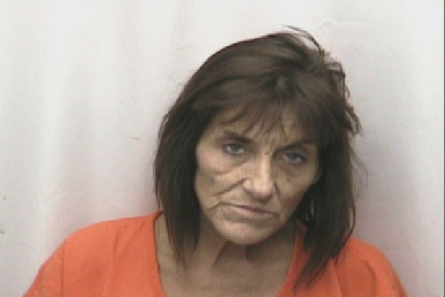 Woman charged with selling meth near Cordova Middle