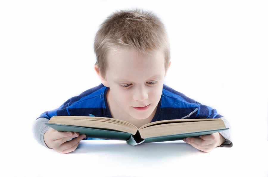 Reading scores stagnant despite efforts to boost performance