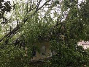 This photo appears to show a tree resting on top of a house in Ellerbe after strong storms passed through Friday afternoon.