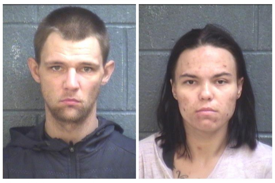 Larry Martin and Megan Dassaro, both of Lancaster, South Carolina, are accused of stealing vehicles in North and South Carolina.
