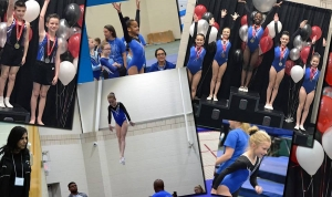 A total of 12 gold medals were won by the Physical Awareness and Gymnastics team over the weekend.