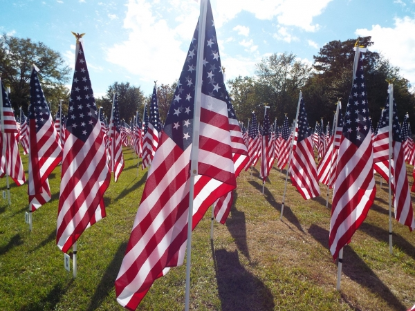 COLUMN: We have a duty to teach children respect for the flag
