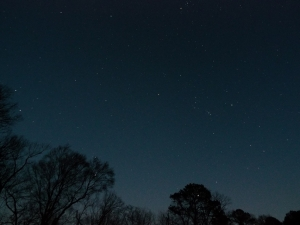 The stars shine bright over Town Creek Indian Mound the evening of Feb. 2 for one of the site's astronomy events.