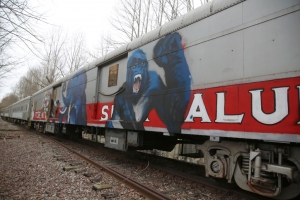 Markings on rail cars deep in Nash County woods show the NCDOT-owned train once belonged to Ringling Bros. and Barnum & Bailey Circus.