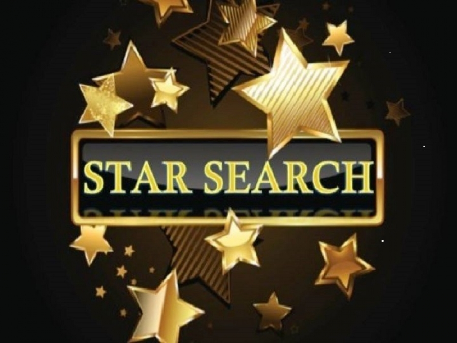 Hamlet Business Development Association Star Search