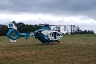 A woman was airlifted to a Charlotte hospital late Thursday morning after crashing into a tree.